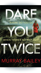idare-you-twice-cover-book-panel